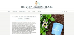 Ugly Duckling House